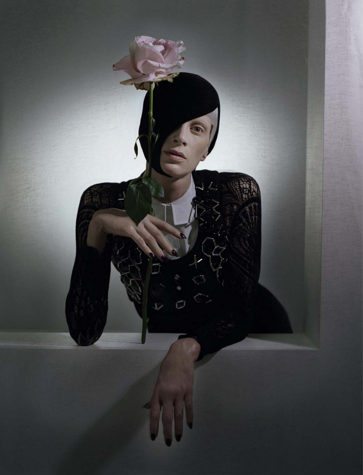 black and roses > by tim walker