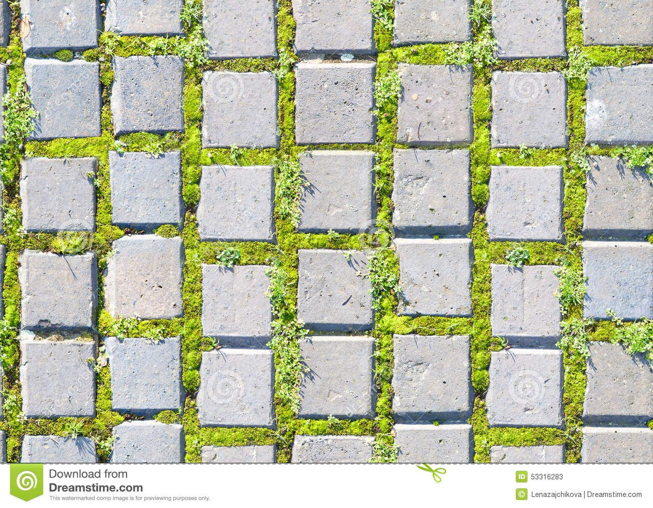 K T Qu H Nh Nh Cho Top View Grass And Stone Texture