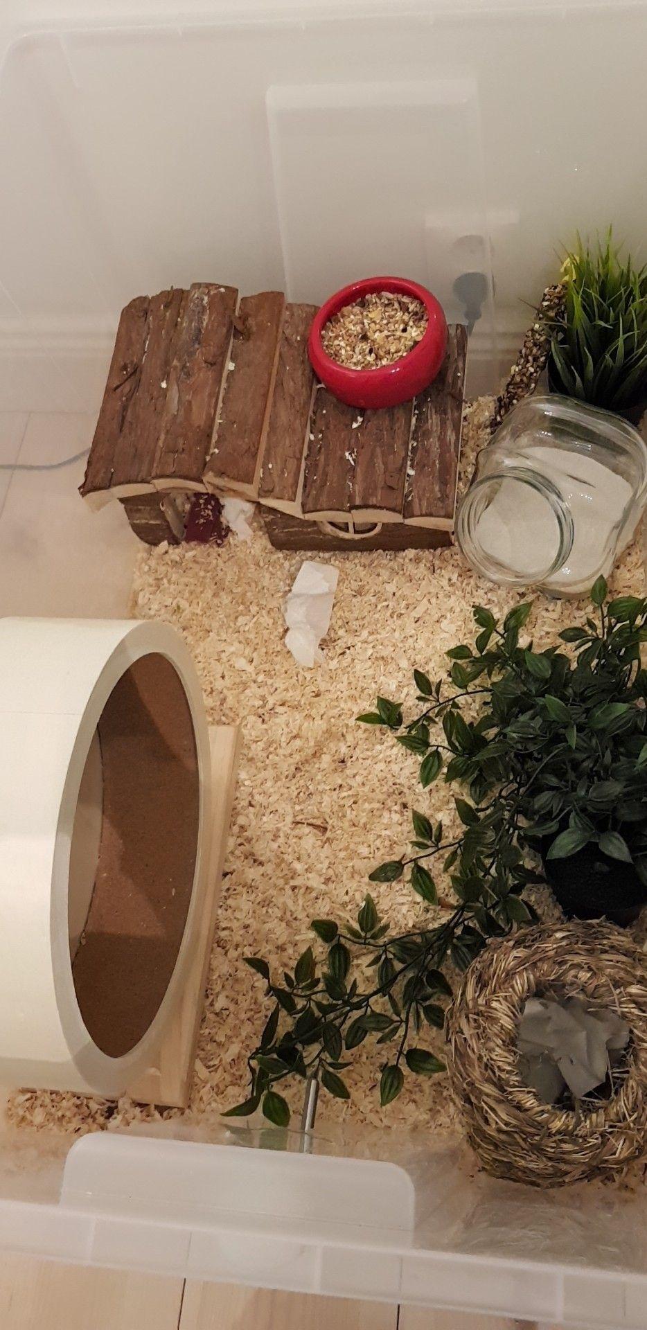 Hamster Cage Hamster Diy Hamster Syrianhamster Ikea Samla