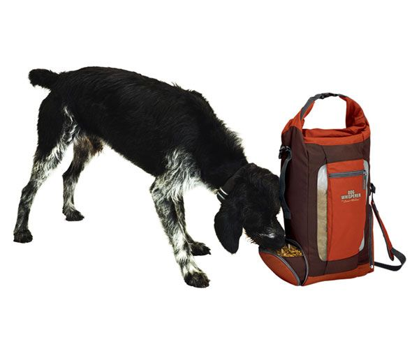 Dog Whisperer Food Hydration Pack Http Www Autoanything Com Pet Travel 69a6606a0a0 Aspx Dogs Dog Food Storage Dog Whisperer