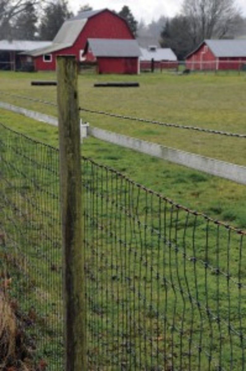 Field Guide to Horse Fences | Pinterest | Field fence, Fences and ...