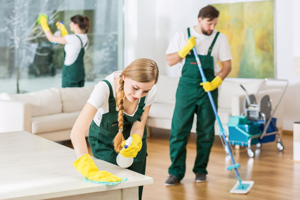For A Small Cleaning Business You Require License And Bank