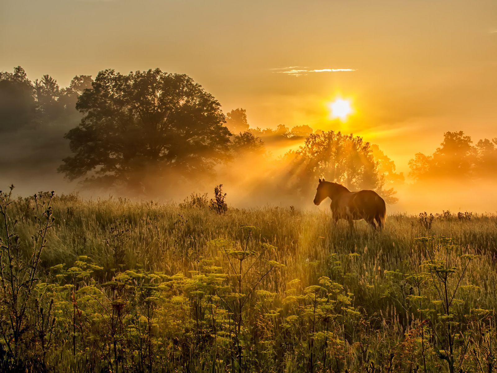 Usa Landscape Photographer Of The Year Landscape Photography
