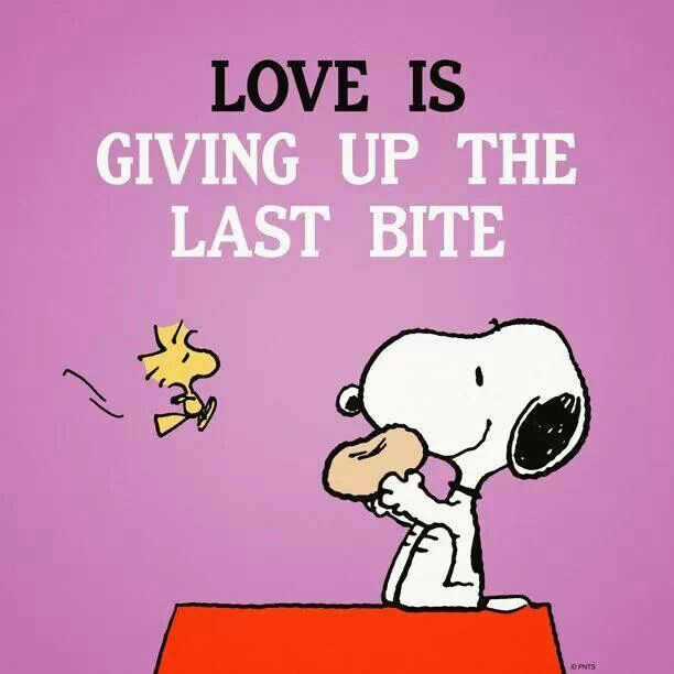 LOVE IS GIVING UP THE LADT BITE
