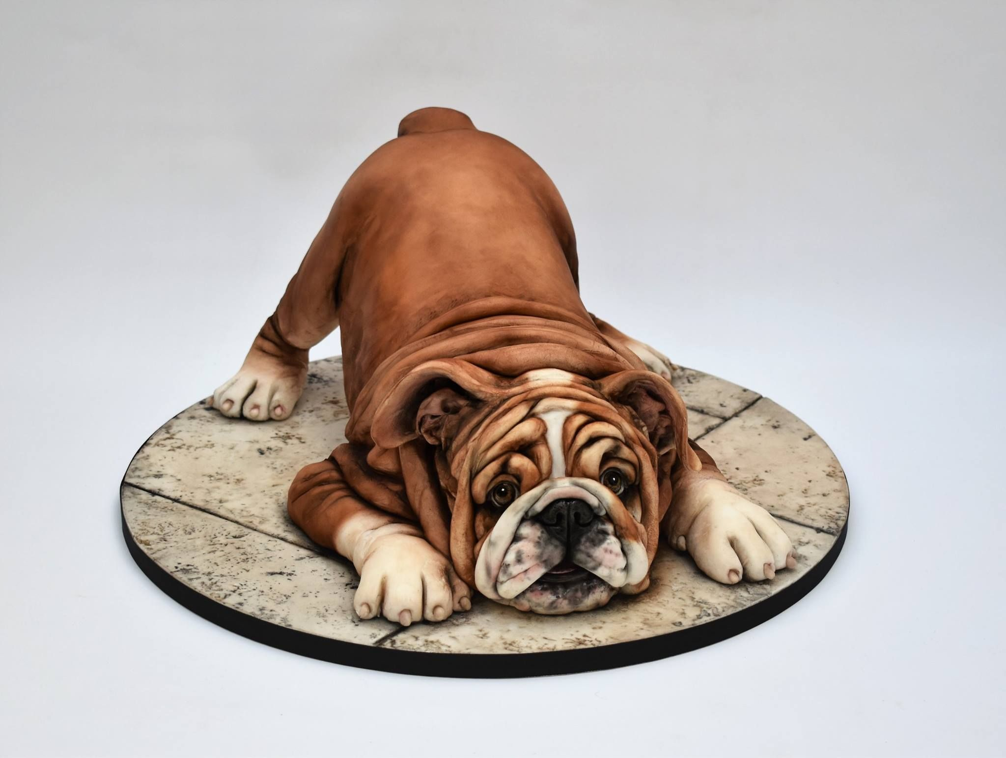 Emma Jayne Cake Design Puppy Cake Dog Cakes Bulldog Cake