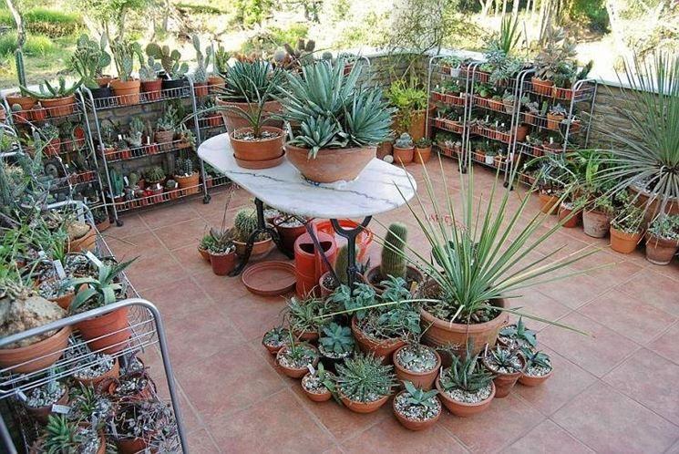 arredare balcone piante - Cerca con Google   balconi e verande ...