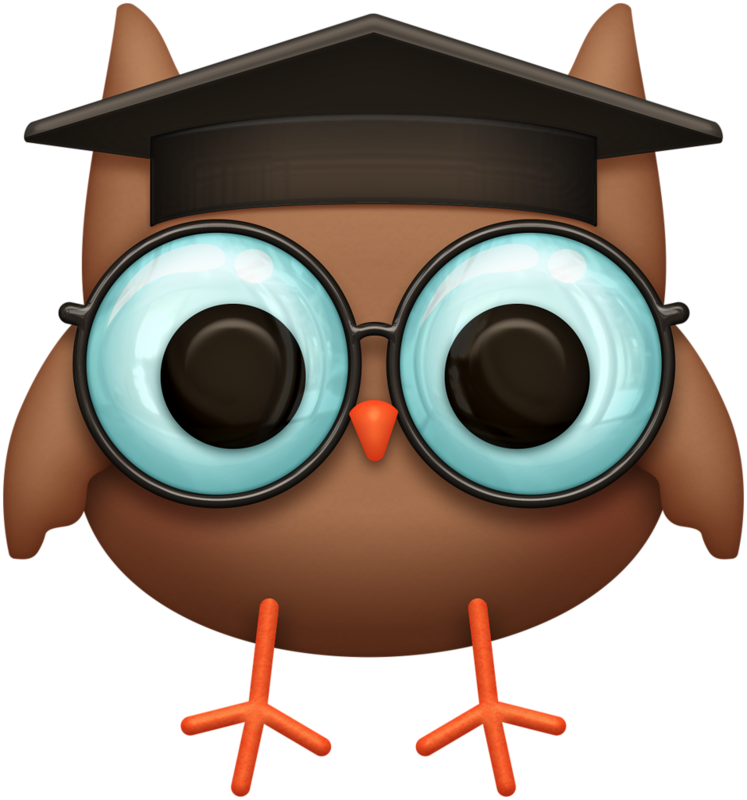 картинки сова в очках и шапке такая