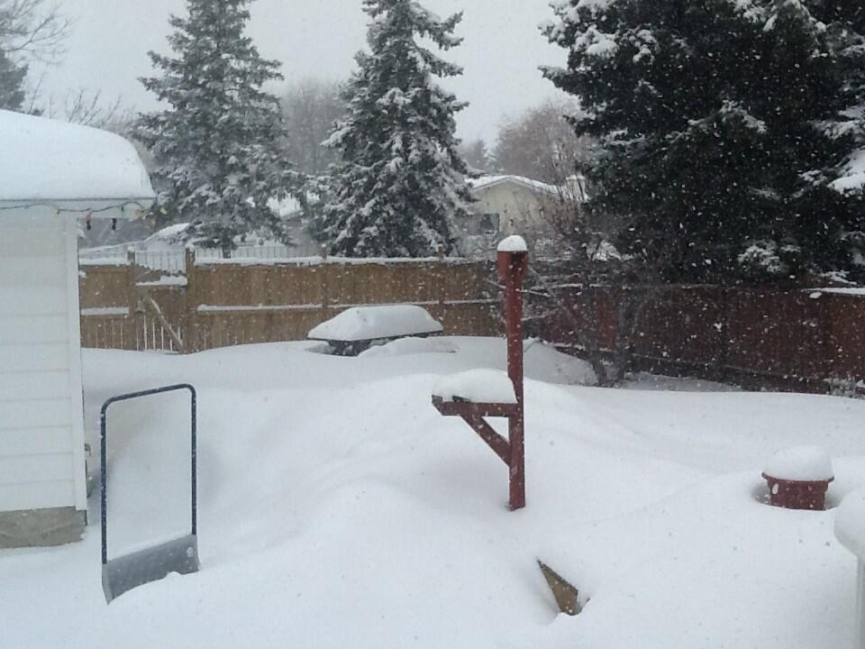 LOOK Southern Alberta Snow Storm Snow, Calgary snow