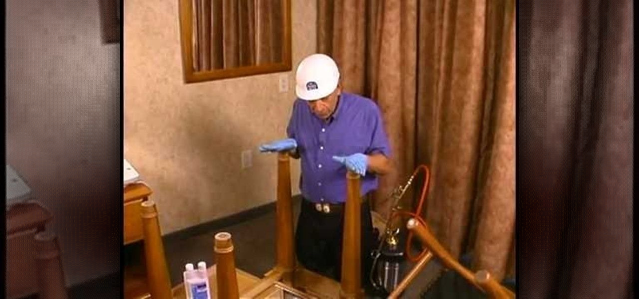 How to Treat your furniture for bed bugs Bed bugs, Bugs
