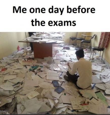 Funny Memes About School Finals Week College Life 70+ Best Ideas – Funny Animals – funny