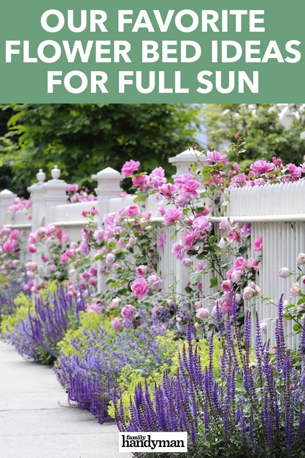 Photo of Our Favorite Flower Bed Ideas for Full Sun   1000 – Modern – Flower Beds 2020 Flower Beds 2020 – Flower Beds 2020 Flower Beds 2020
