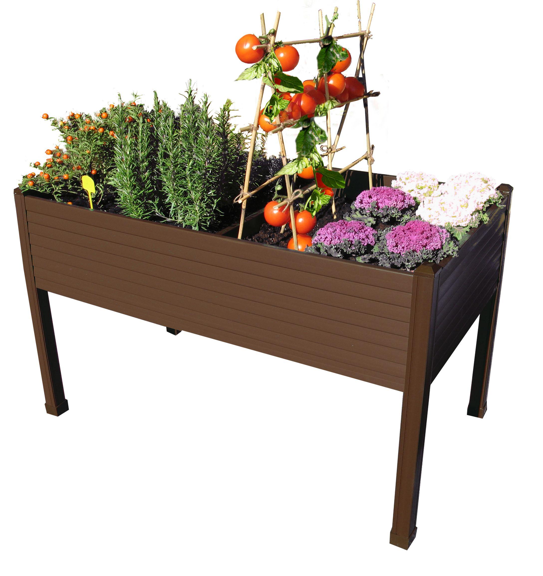 Mesa de cultivo un balc n con huerto for Vivero organico