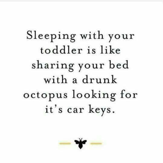 I don't even have kids, but can testify about the accuracy of this statement because of nieces and nephews!!!