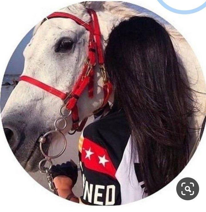 افتارات بنات حصان Instagram Profile Picture Ideas Horse Girl Photography Profile Picture For Girls