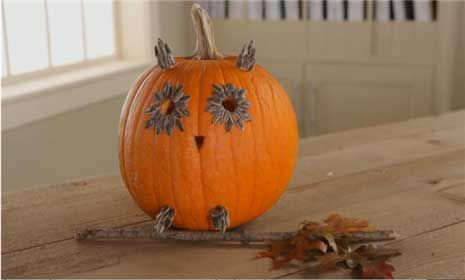 See How to Make an Owl Pumpkin