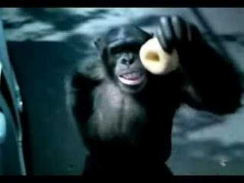Trunk Monkey Ad Some Of The Funniest Ads Ever To Come Out Of An
