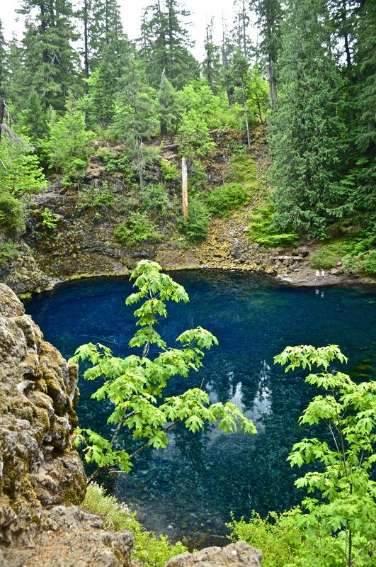 Blue Pool, top 10 Oregon hikes for kids places to go + things to