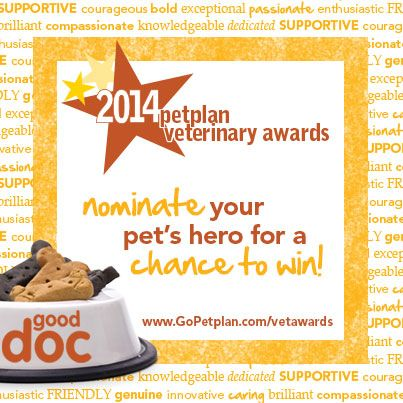Is Your Vet Your Pet S Best Friend Nominate Them For Petplan Veterinary Award And You Could W Embrace Pet Insurance Pet Insurance Reviews Pet Health Insurance
