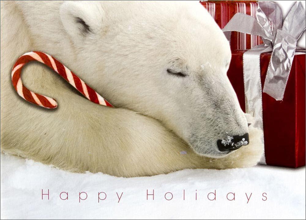 polar bear christmas | Home > Christmas Cards > Animals > Polar ...
