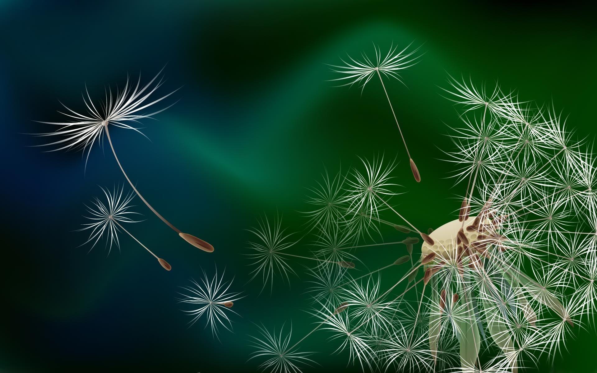 Image result for dandelion head seeding the world