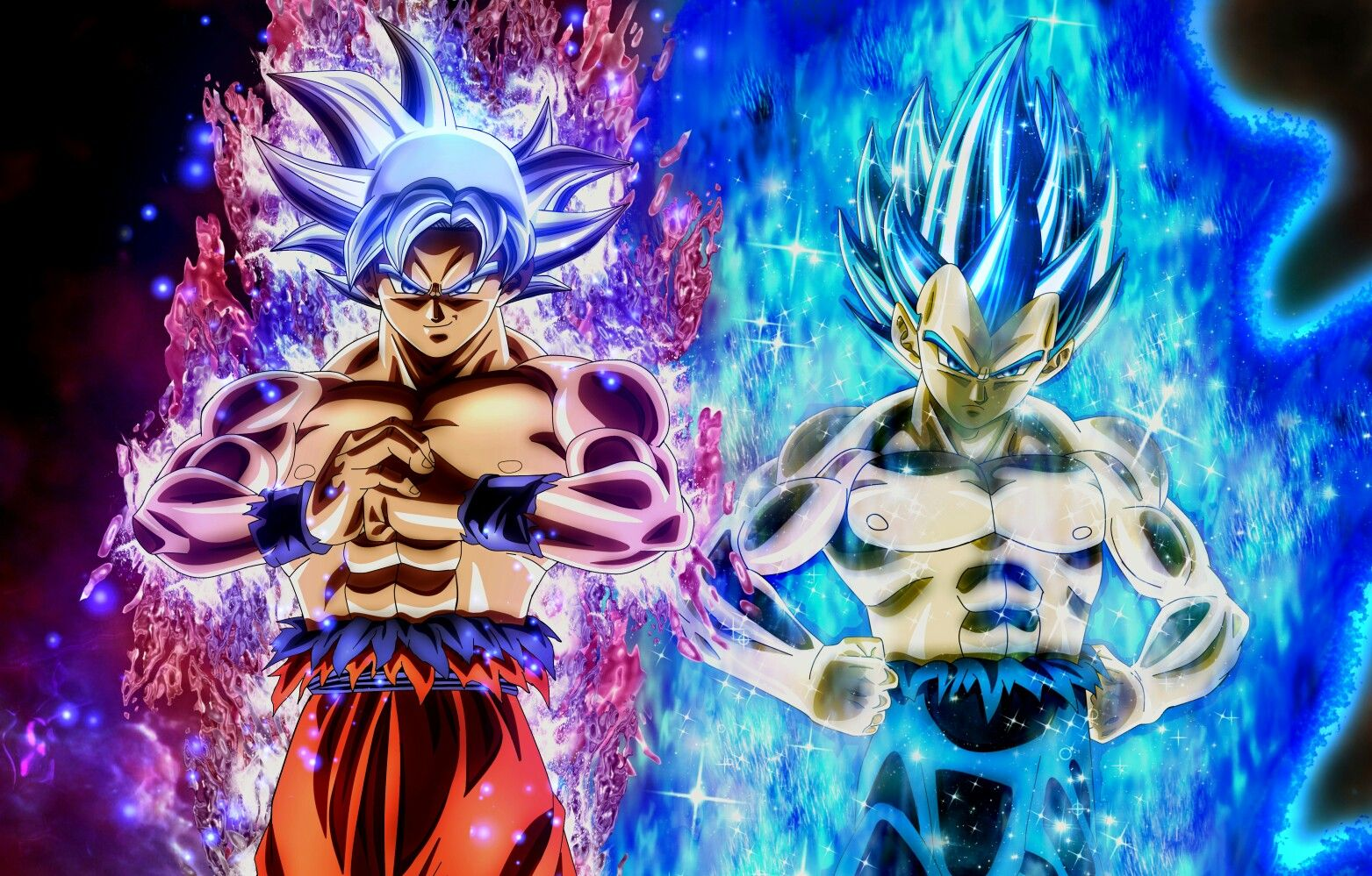 Goku And Vegeta In Their Final Forms Dragon Ball Super Artwork Anime Dragon Ball Dragon Ball Super Goku