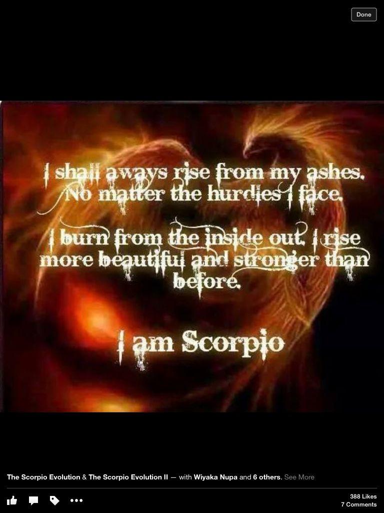 SCORPIO | Zodiac | Scorpio traits, Scorpio quotes, Scorpio moon