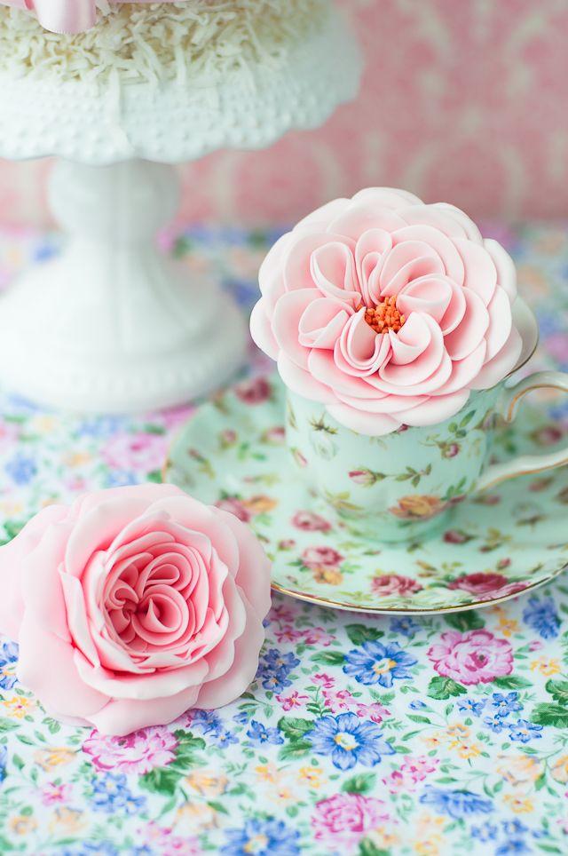 Lulus Sweet Secrets Sugar English Garden Roses