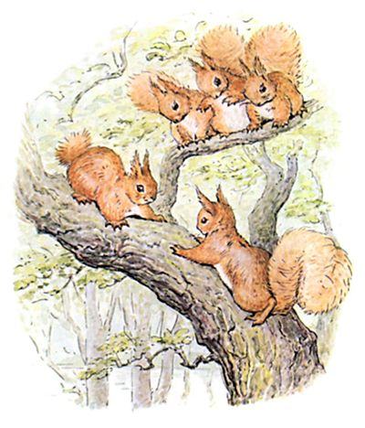 the tale of squirrel nutkin pdf