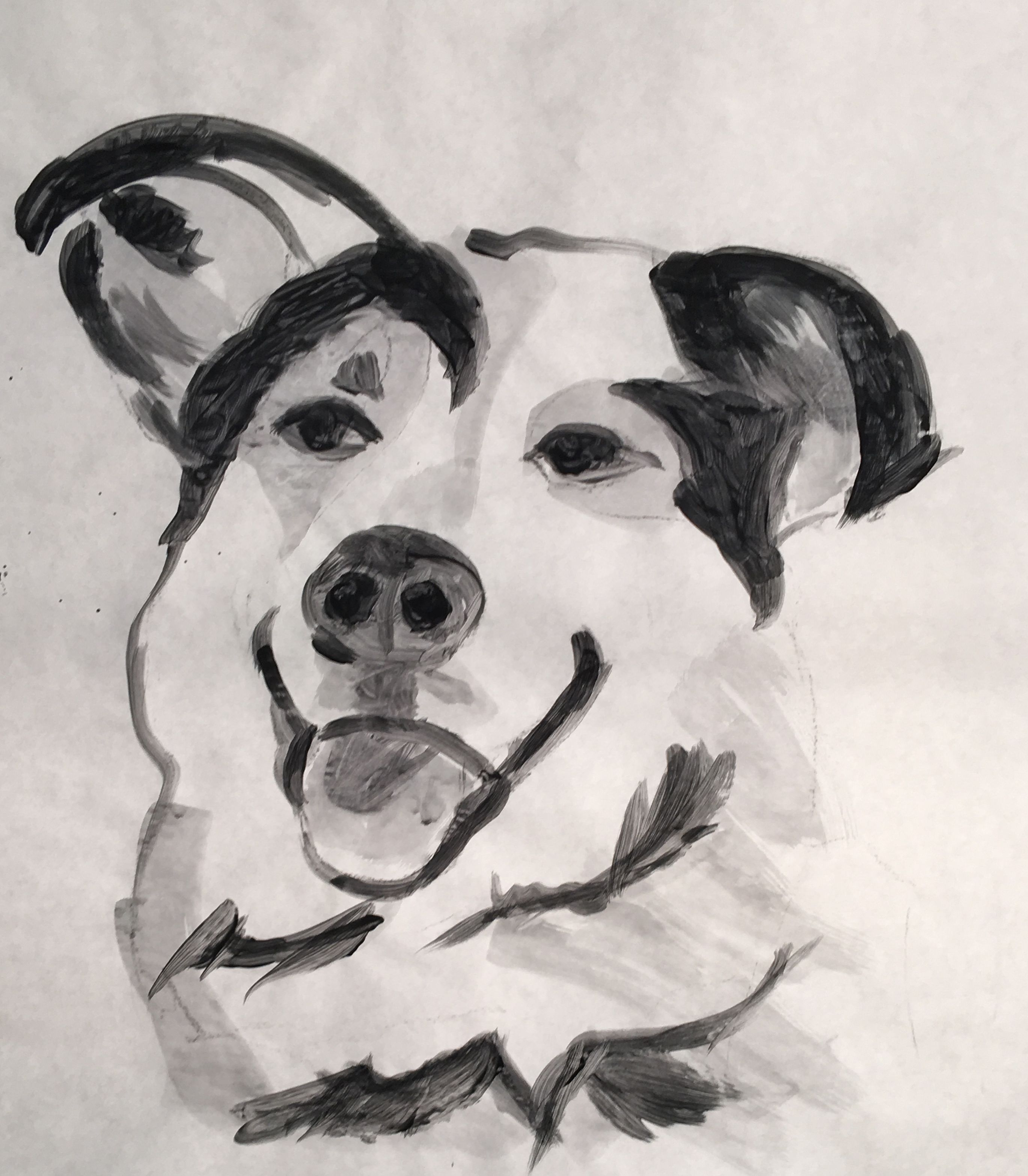 Unique Ink Drawings, Custom Pet Drawings, Dog Drawing