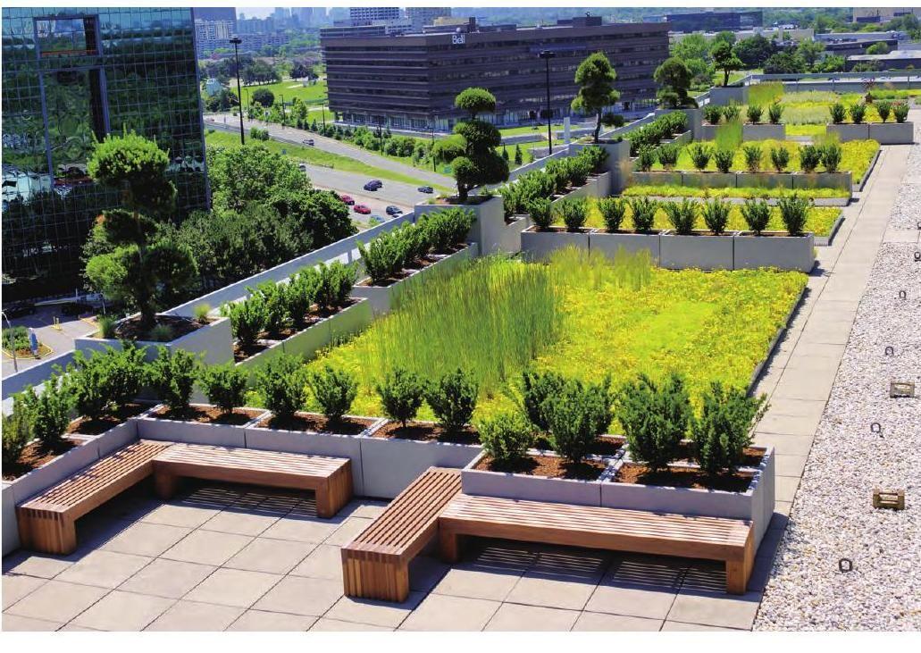 Roof Garden Landscape - World Landscape Case Studies | Roof Garden, Landscape Services, Landscape Design