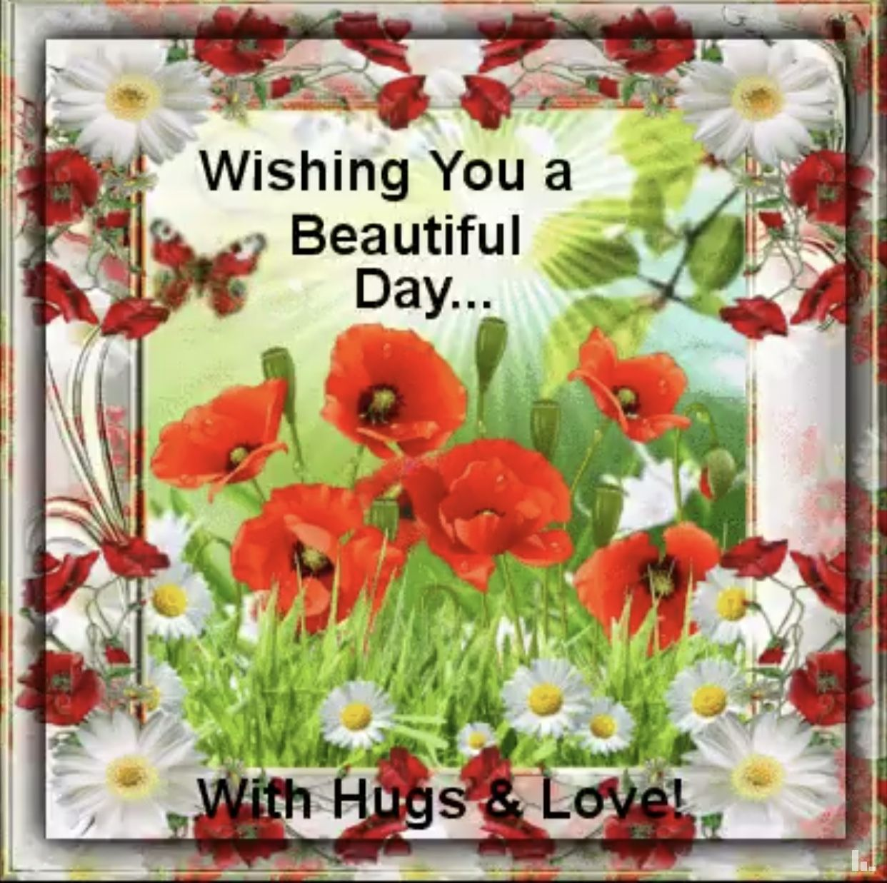 Pin Av Tove Engebretsen P Have A Nice Day Good Morning Good