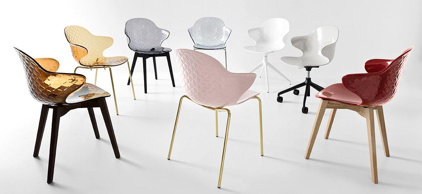 Wood And Polycarbonate Chair Saint Tropez W Calligaris Cs1855
