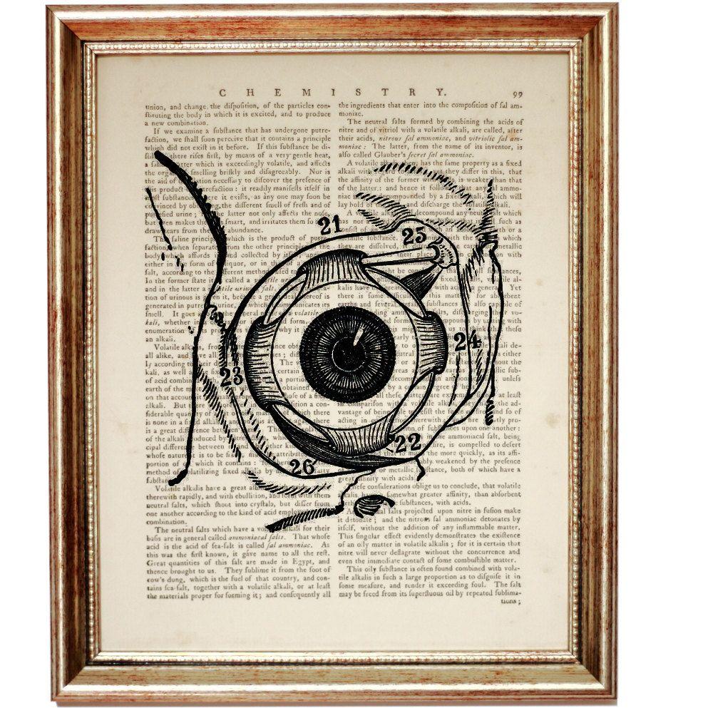 Eye Poster, EYE ANATOMY PRINT, Eyeball Anatomy Gift Art Print ...