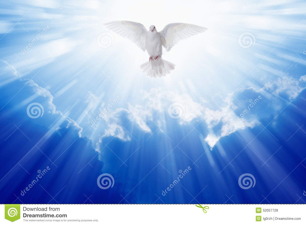 Holy Spirit Dove - Download From Over 41 Million High Quality Stock