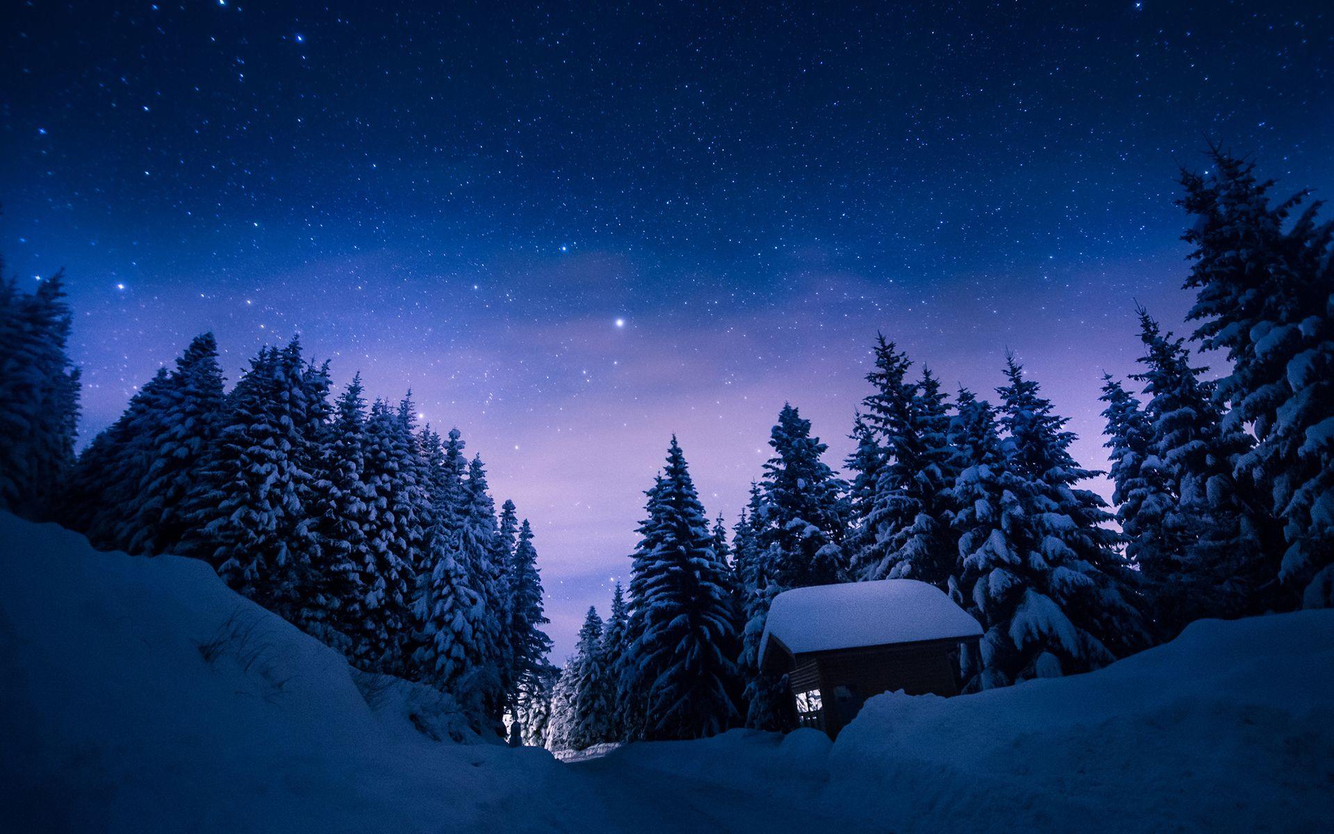 Trees Snow Winter Night Stars Cabin Path Trail Trees Sky