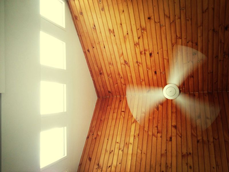 Simple Fixes For A Noisy Or Wobbly Ceiling Fan Ceiling