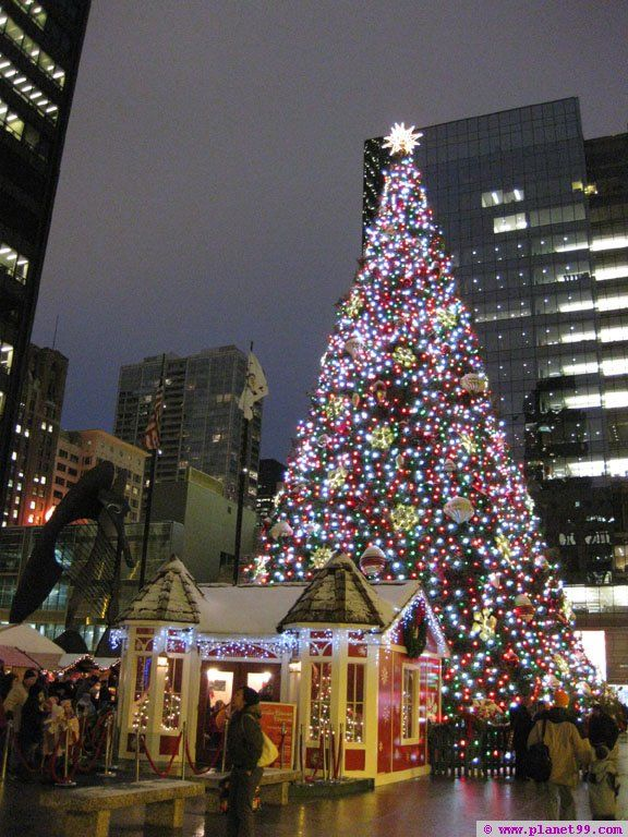 christkindlmarket chicagochicago at daley plaza chicago holidays christmas lights christmas trees - Chicago Christmas Decorations