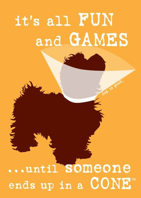 Wednesday Wisdom: fun & games cone – Carrie Loves