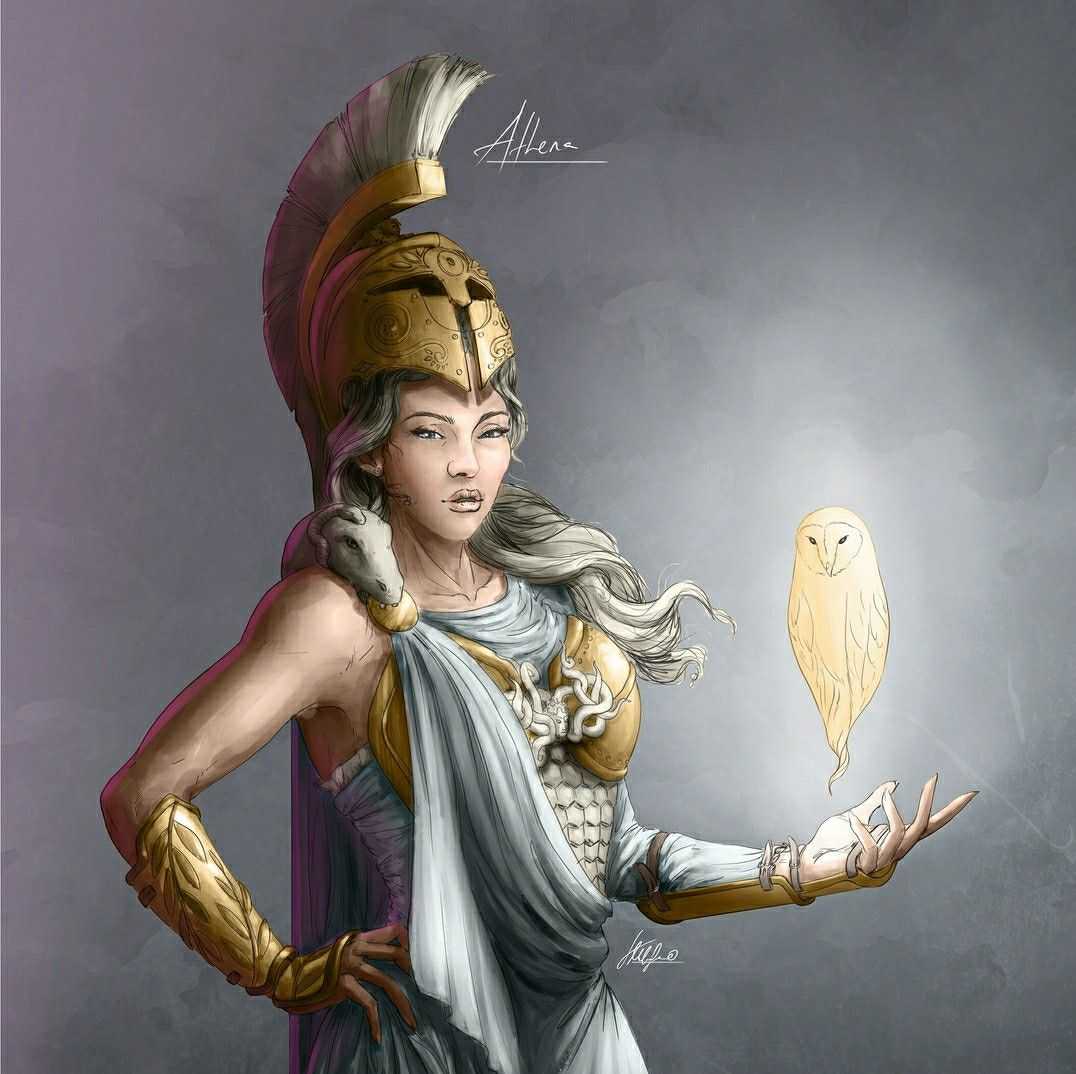 Athena (With images) | Greek mythology art, Greek and ...