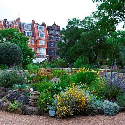 Chelsea Physic Garden | Days Out | London garden, Garden, London