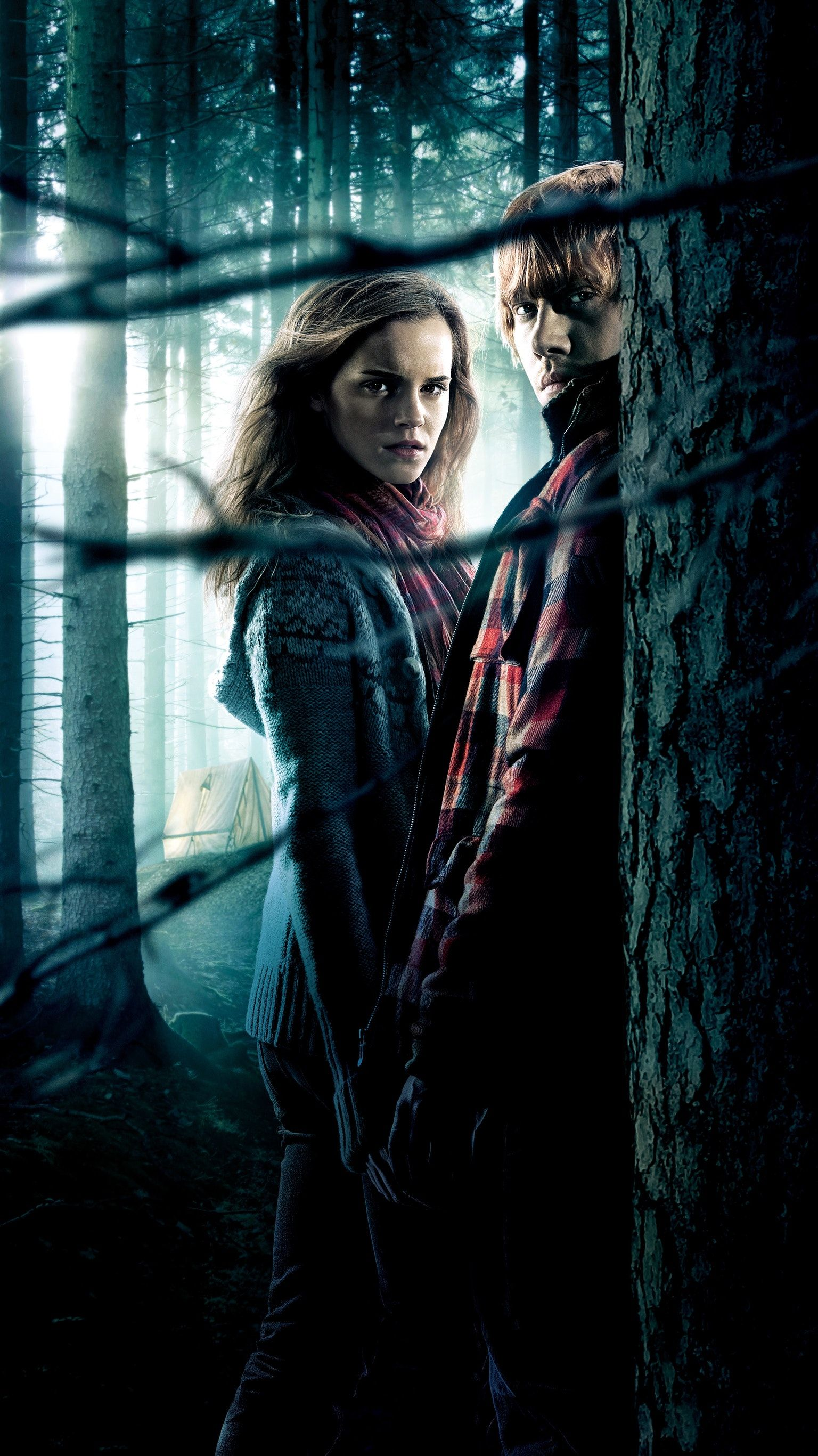 Harry Potter And The Deathly Hallows Part 1 2010 Phone Wallpaper