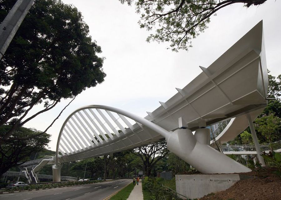 ALEXANDRA ARCH & FOREST WALK | Bridges | Bridge design, Arch