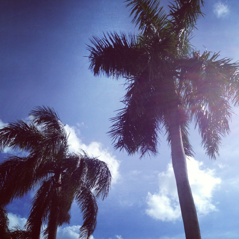 #Flordia Boca Raton