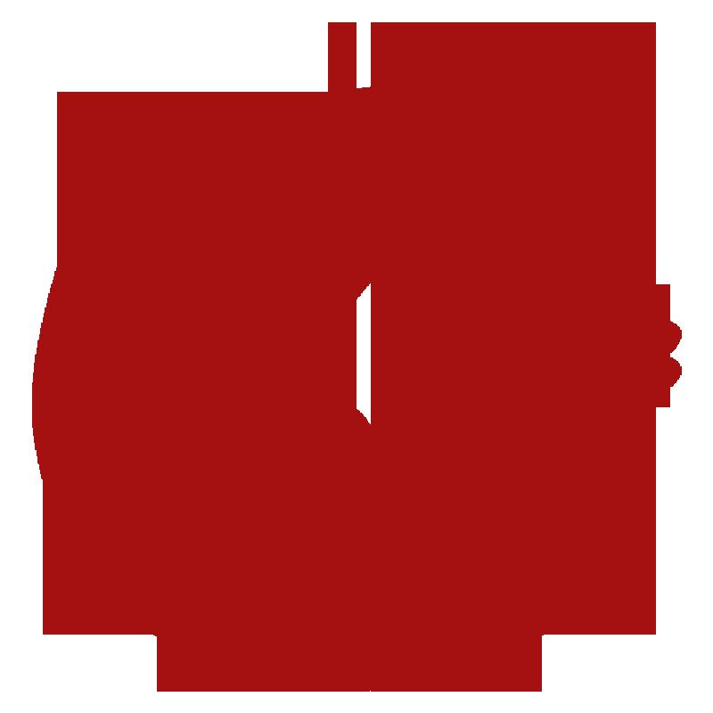 Nanatsu No Taizai Symbol (King) | Tatuagens de anime ...