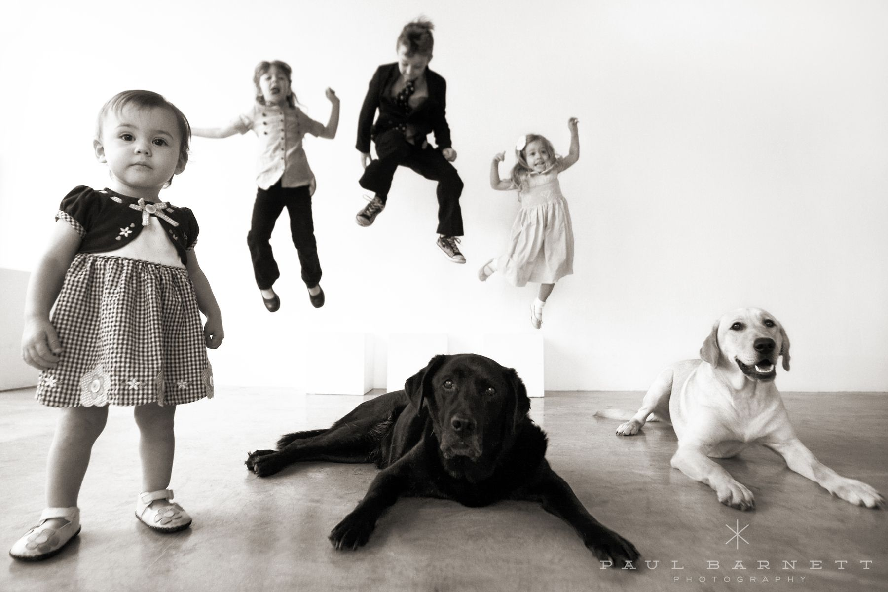 Kids and Dogs, Dogs and Kids. Fun portrait session.