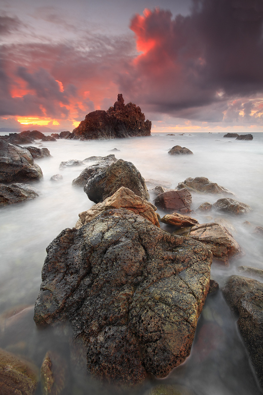 Out, Into The Wild by Raquel de Castro