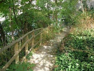 Jardin Sauvage Saint Vincent Montmartre Sauvage Jardins Exterieur