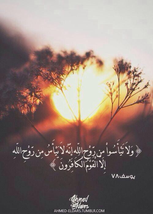 و لا ت ي أ س وا م ن ر و ح الل ه إ ن ه لا ي ي أ س م ن ر و ح الل ه إ لا ال ق و م ال ك اف ر ون Quran Quotes Inspirational Quran Quran Quotes Love