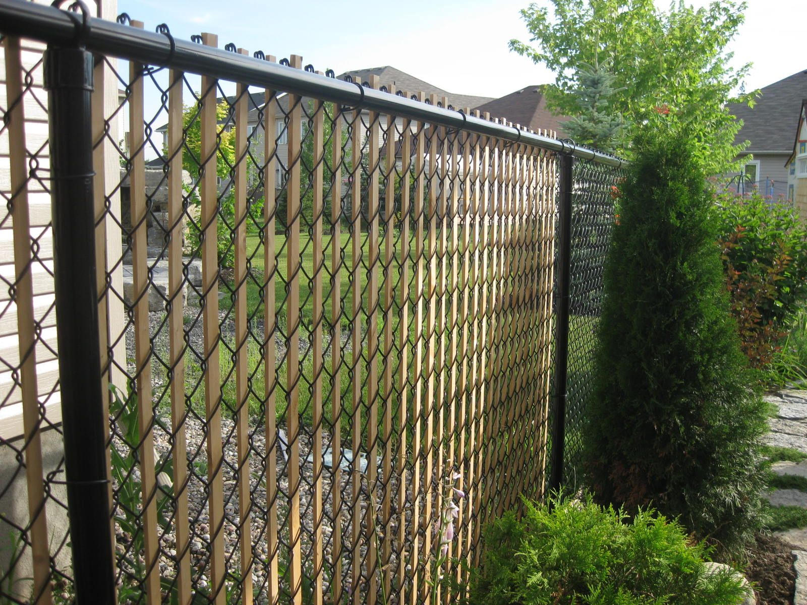 Ricks ramblings blog spruce up a chain link fence insert cedar ricks ramblings blog spruce up a chain link fence insert cedar slats baanklon Images