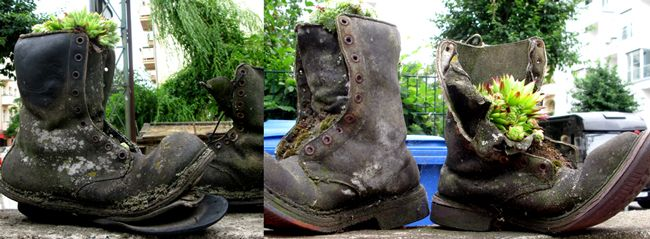 Mygreentown Urban Gardening Berlin - Garten - Stadtgarten - Blog - Bepflanzte Schuhe http://www.mygreentown.de/blog/